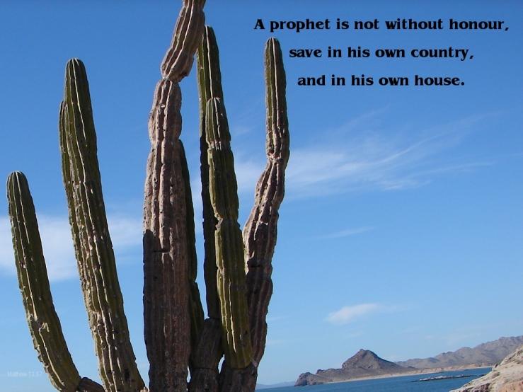 Matthew 13:54-58 | One Christ Follower's Daily Meditations